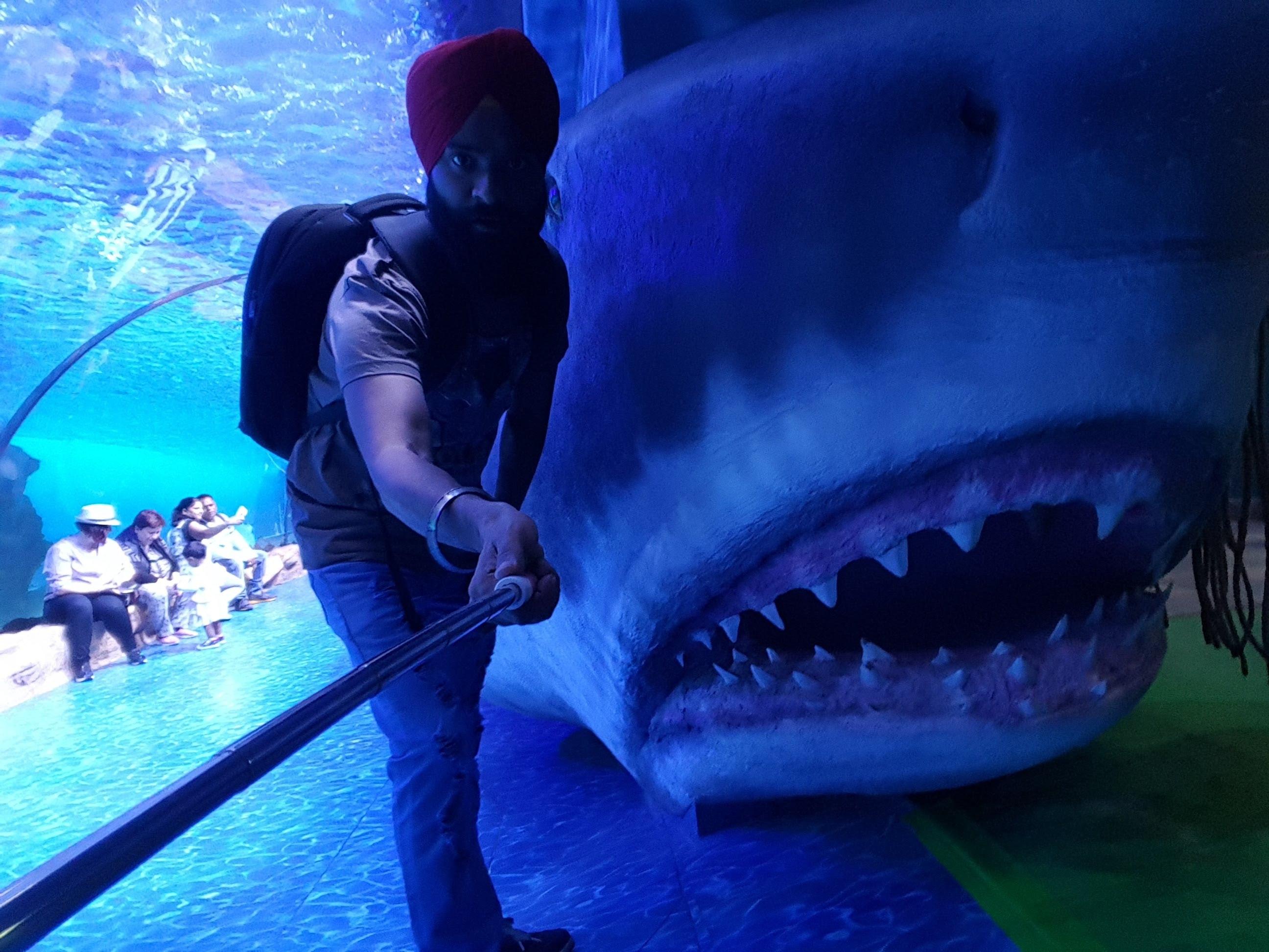 Dubai aquarium VRZOO