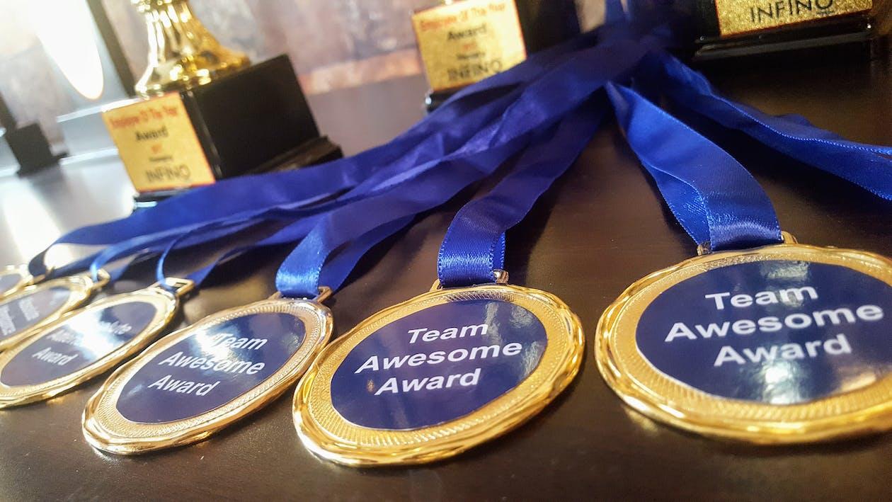Free stock photo of 32nd golden disc awards, award, award ribbon