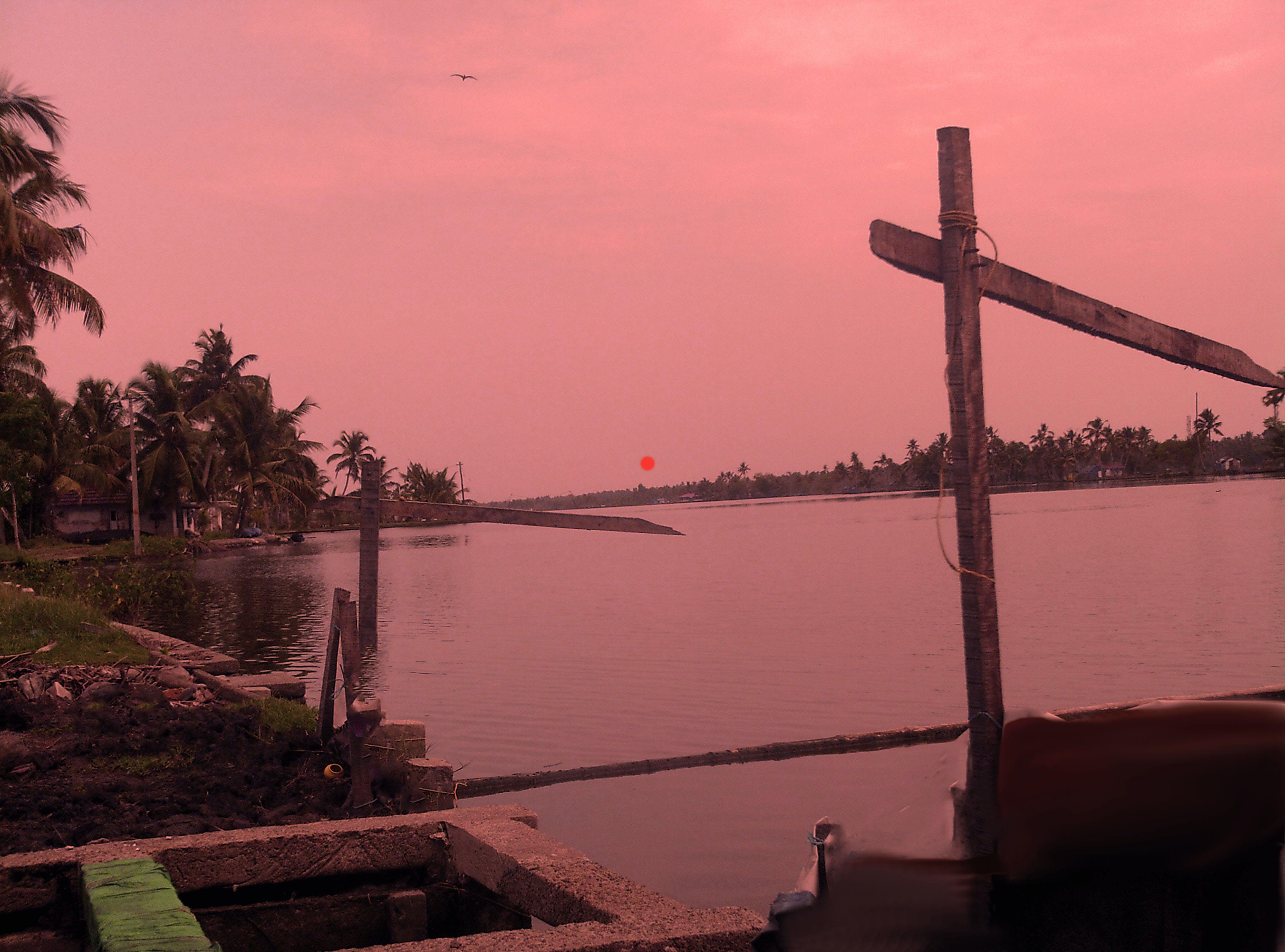 Free stock photo of evening sun, setting sun, sundown, sunset