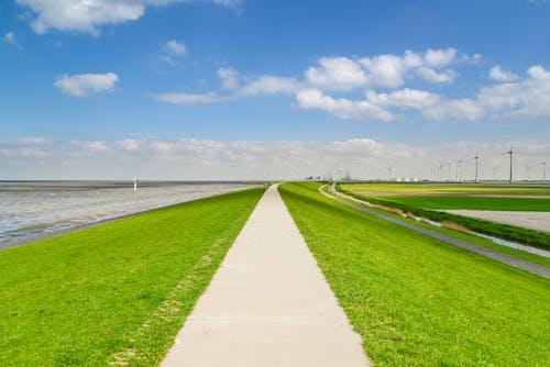 alan, arazi, bulut, çim içeren Ücretsiz stok fotoğraf