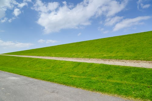 Landscape Photo of Green Grass Field