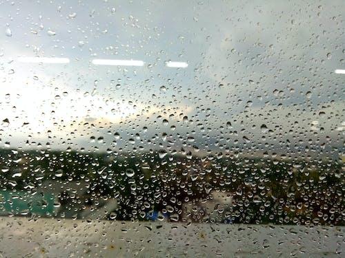 Darmowe zdjęcie z galerii z deszcz, kropla, krople, krople deszczu