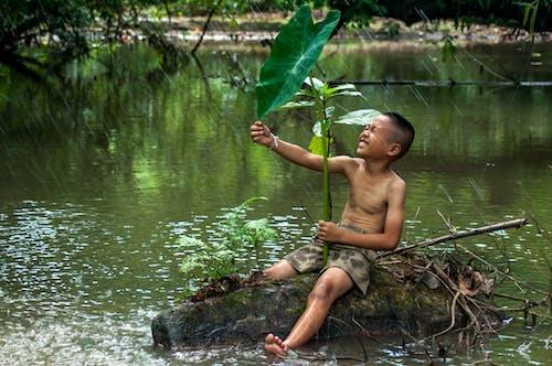 Fotobanka sbezplatnými fotkami na tému život