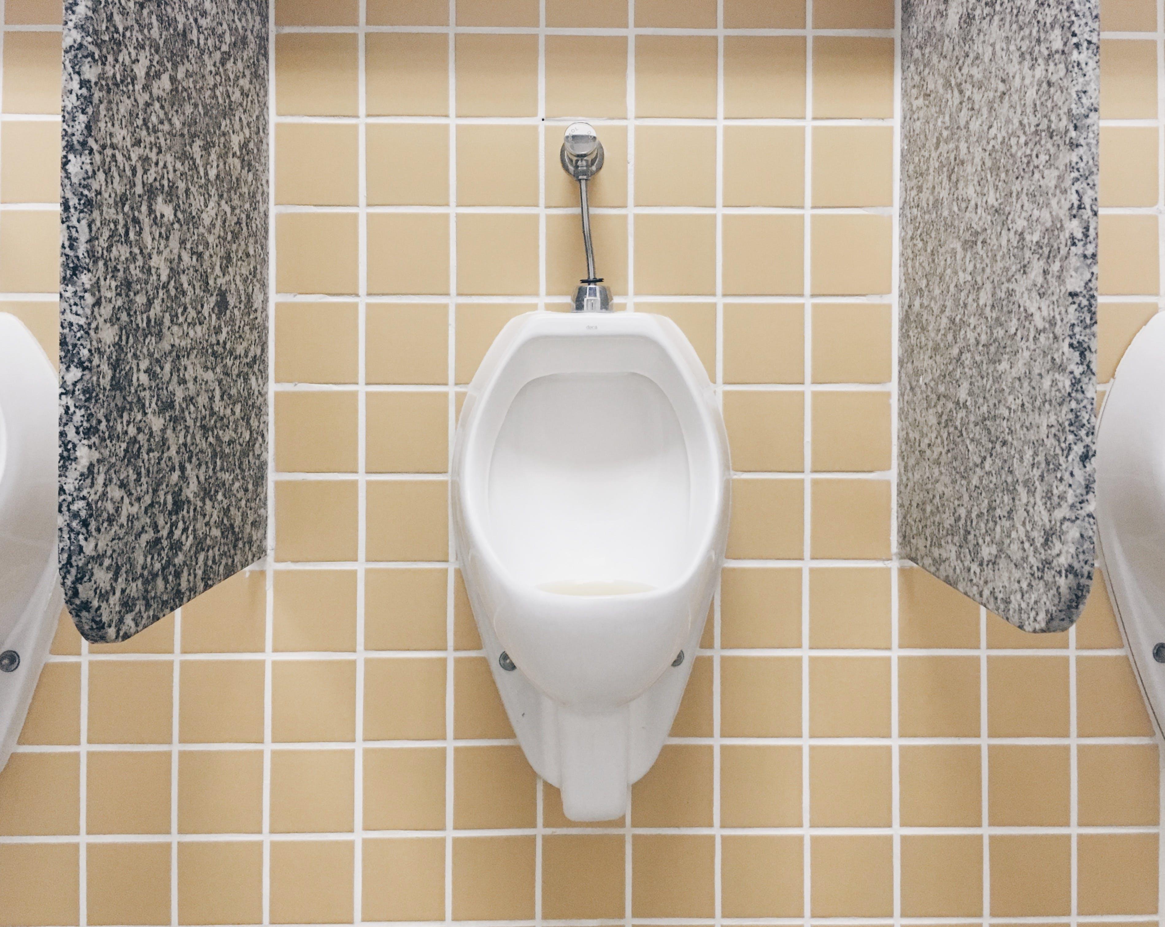 Free stock photo of bathroom, clean, golden yellow, toilet