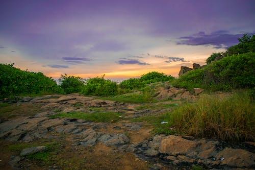 Fotobanka sbezplatnými fotkami na tému Srí Lanka, večerné slnko