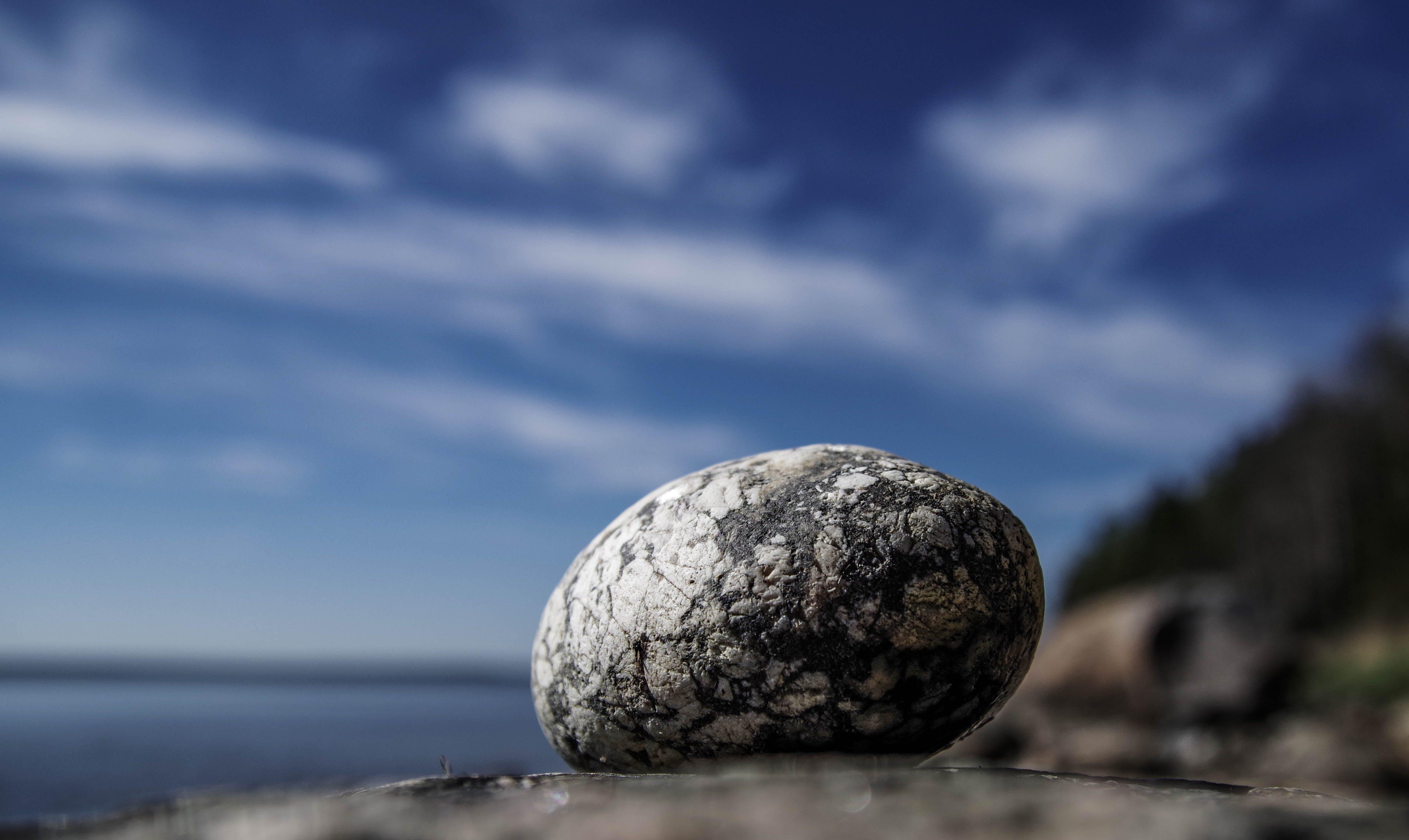 Ilmainen kuvapankkikuva tunnisteilla kallio, makro