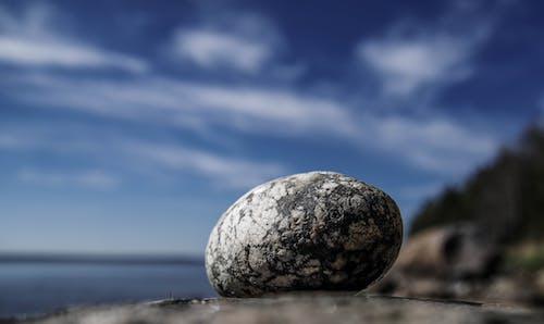 Macro Photo Of A Rock