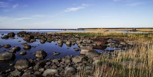 Gratis stockfoto met gras, h2o, mooi uitzicht, rotsen