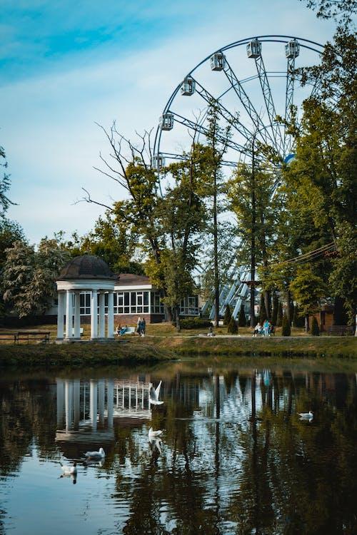 Black Ferris Wheel Near Body of Water