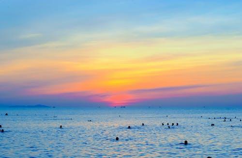 Základová fotografie zdarma na téma moře, obloha, oceán, plavání