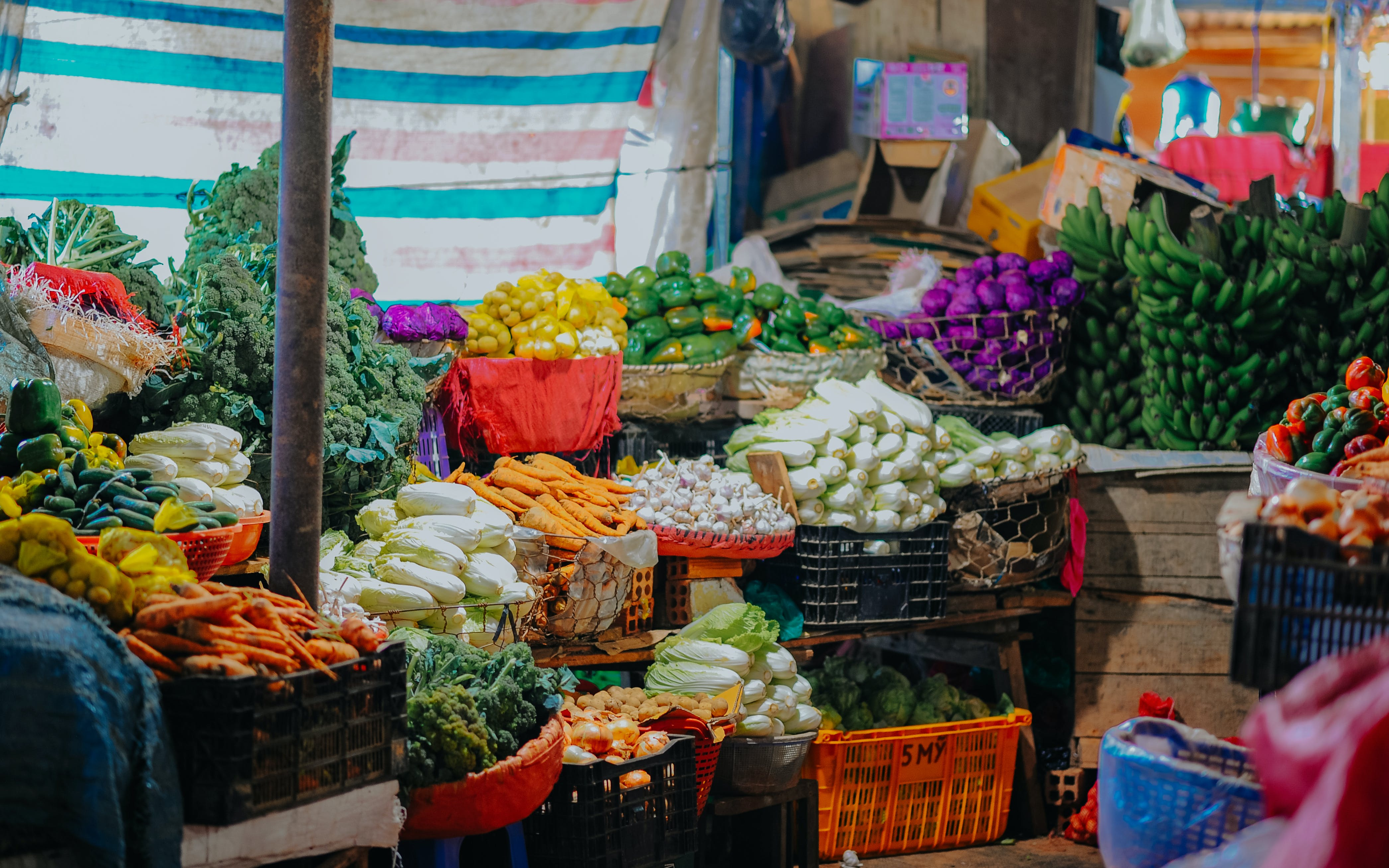 Assorted Vegetables On Crates