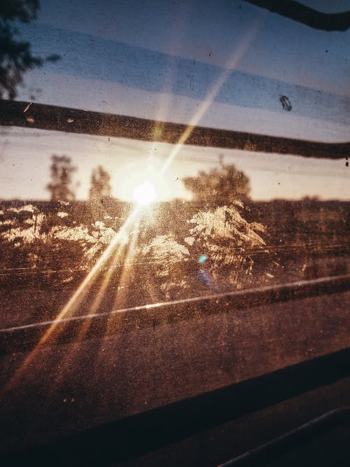 Free stock photo of early morning, focus, moody, morning sun
