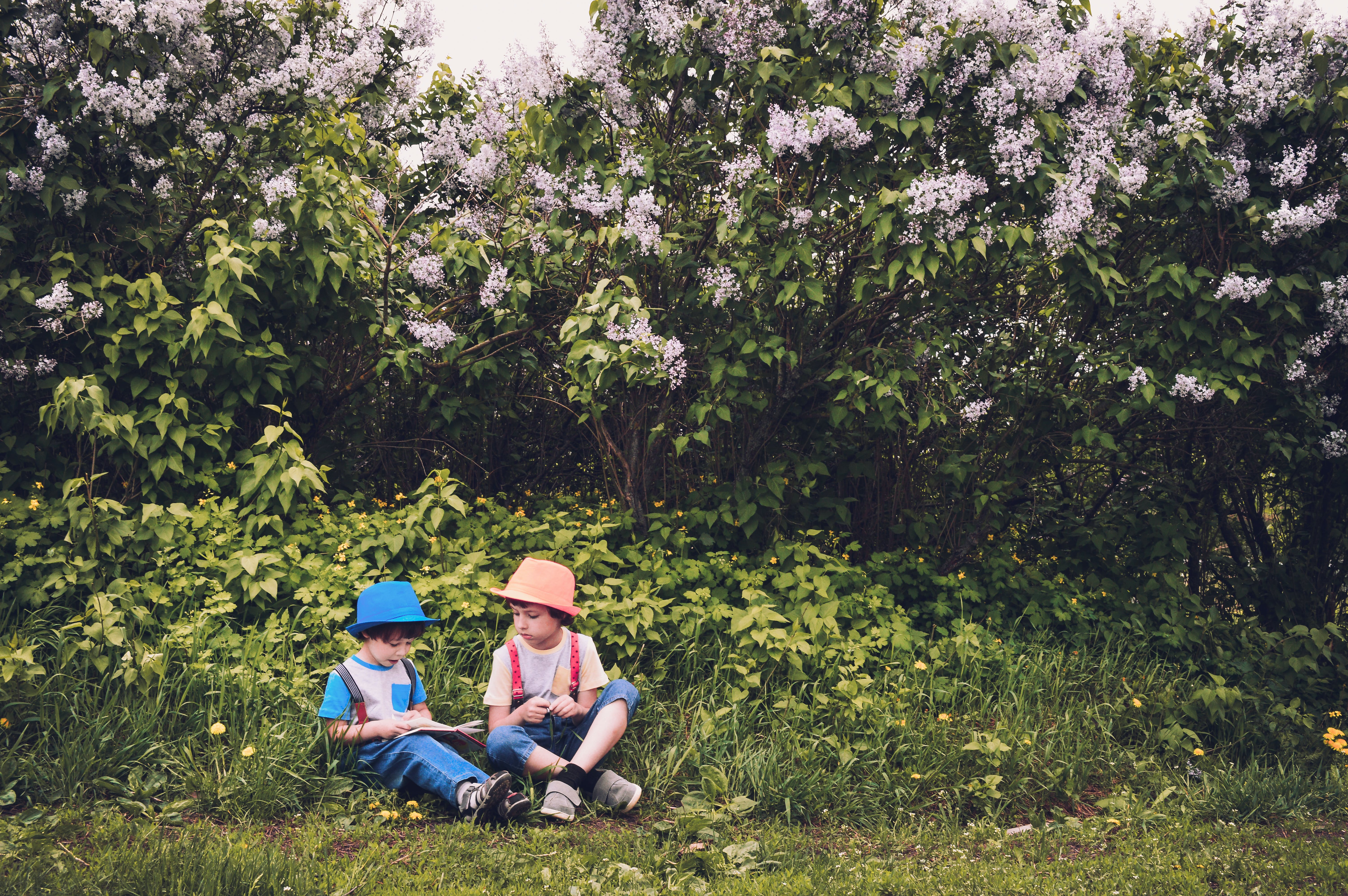 Boy in White and Blue Shirt and Blue Jeans Sitting in Green Grass