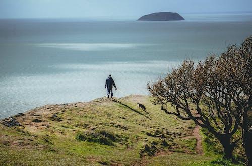 걷고 있는, 바닷가의 무료 스톡 사진