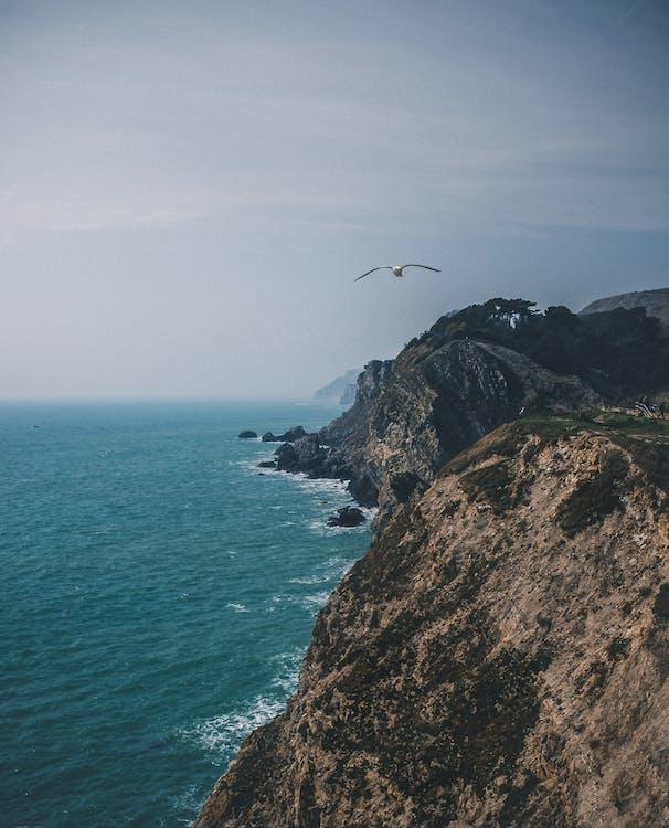 baai, daglicht, golven