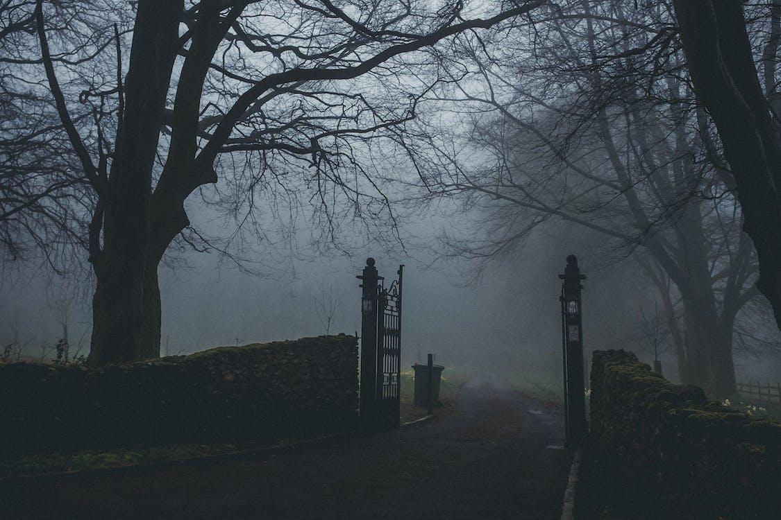 brána, krajina, malebný