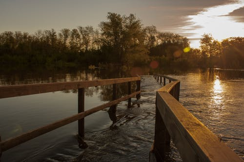 Free stock photo of bridge, nature, nature reserve, sunset