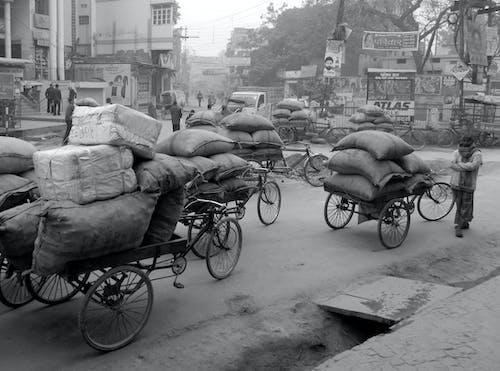Photos gratuites de bicyclettes, charges, coursiers, inde