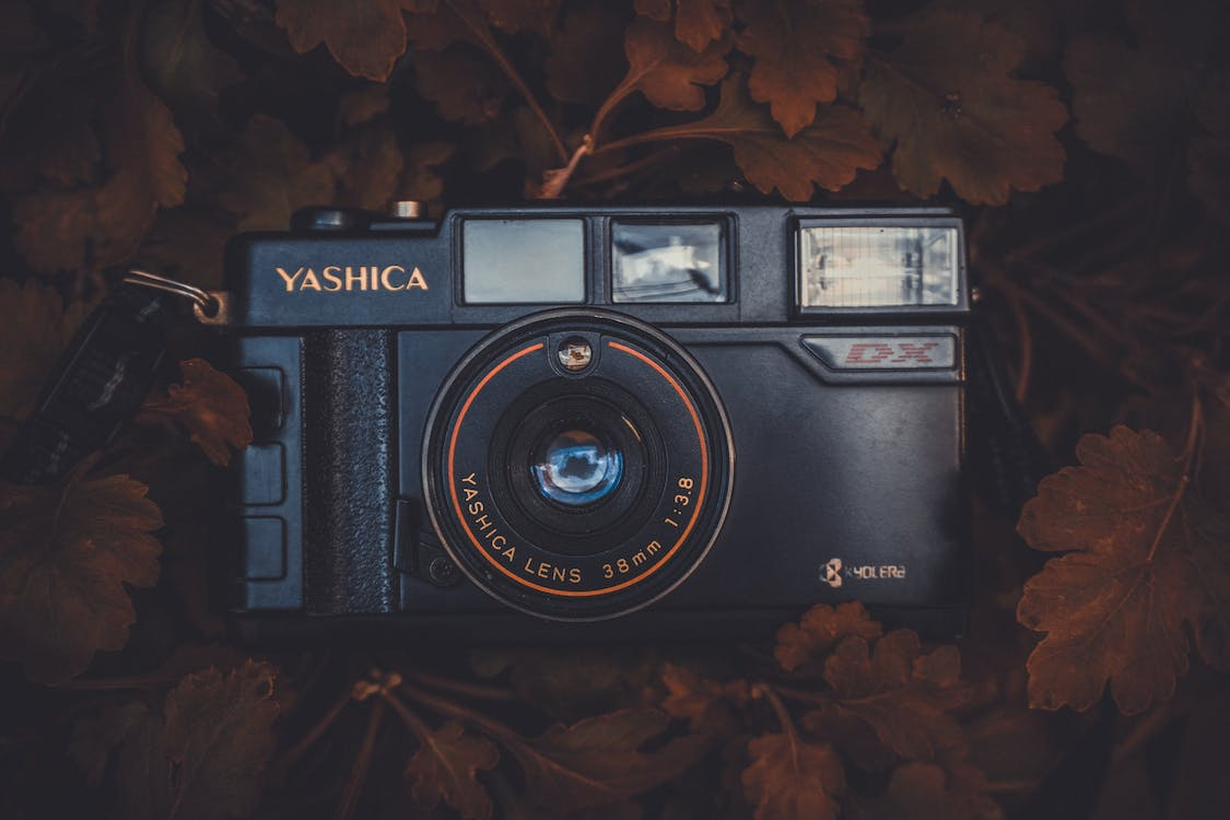 Black Yashica Compact Film Camera Placed on Brown Leaves