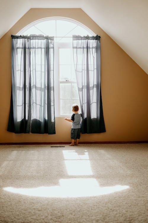 インドア, カーテン, カーペット, キッドの無料の写真素材