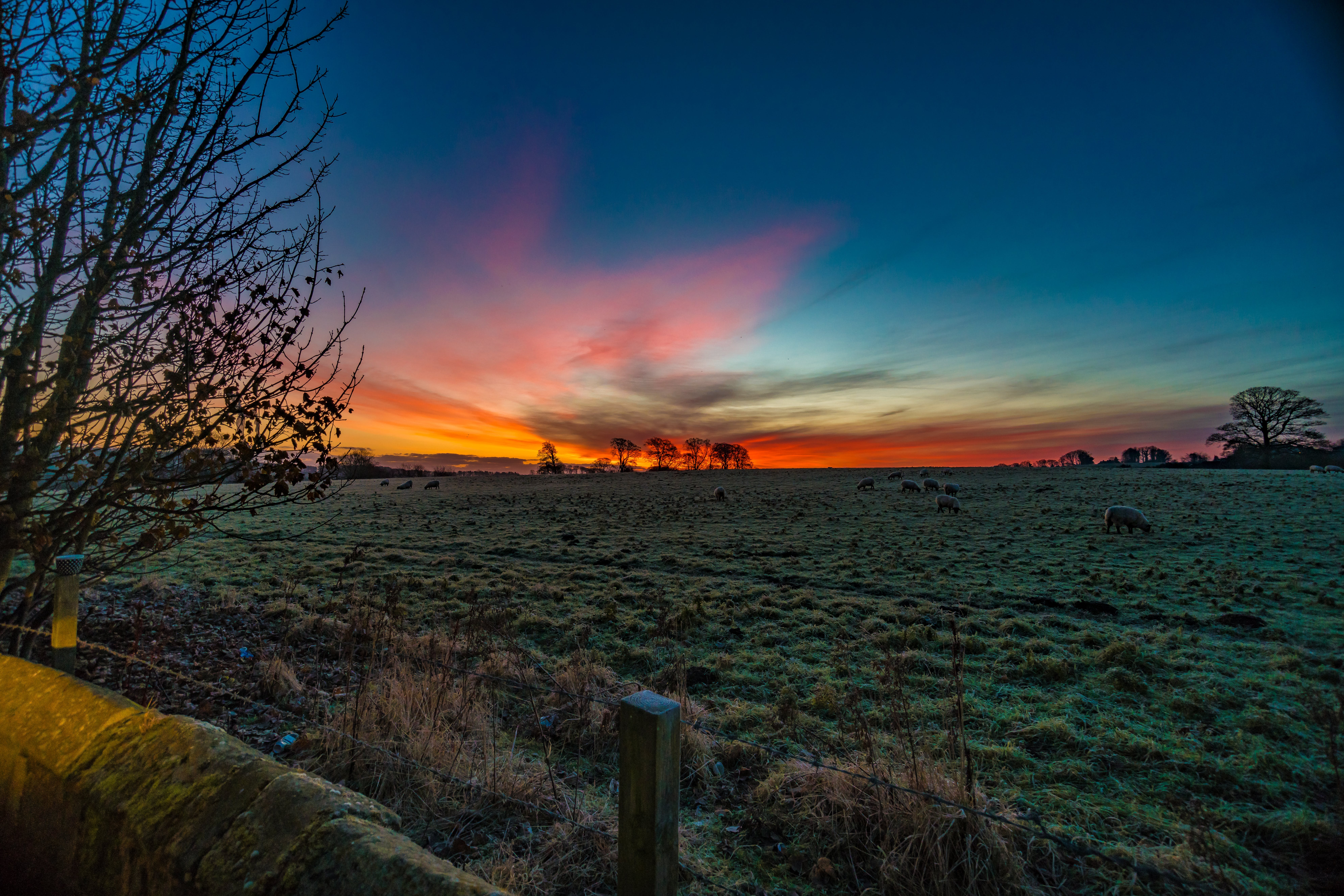 Photography of Sunset over Green Grass Field