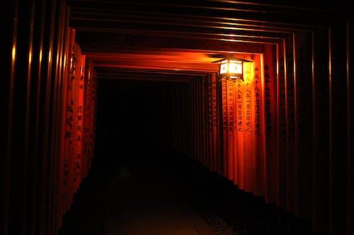 京都, 日本, 牌坊, 神道 的 免费素材照片