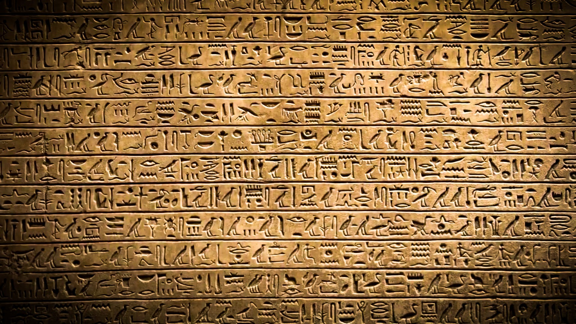 cairo, egypt, egyptian
