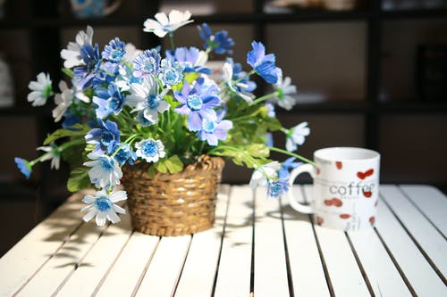 Free stock photo of cup, flowers