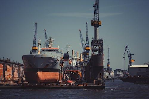 Darmowe zdjęcie z galerii z budować, dok, dźwig, dźwigi portowe