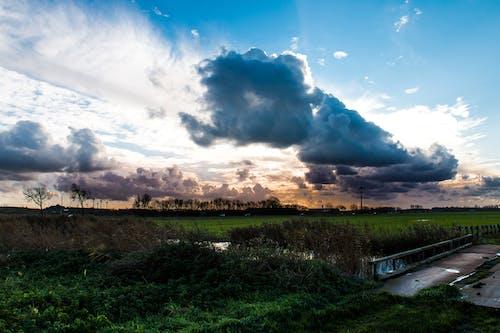 คลังภาพถ่ายฟรี ของ เมฆ, เมฆครึ้ม, เมฆดำ