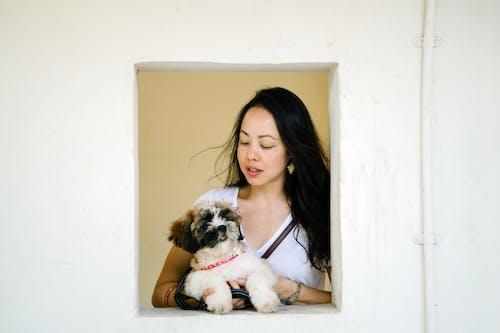 Základová fotografie zdarma na téma asiatka, asijská holka, chlupatý, dívání