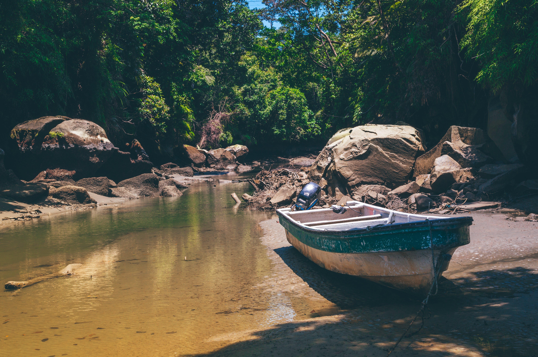 ağaçlar, akarsu, çevre, deniz aracı içeren Ücretsiz stok fotoğraf