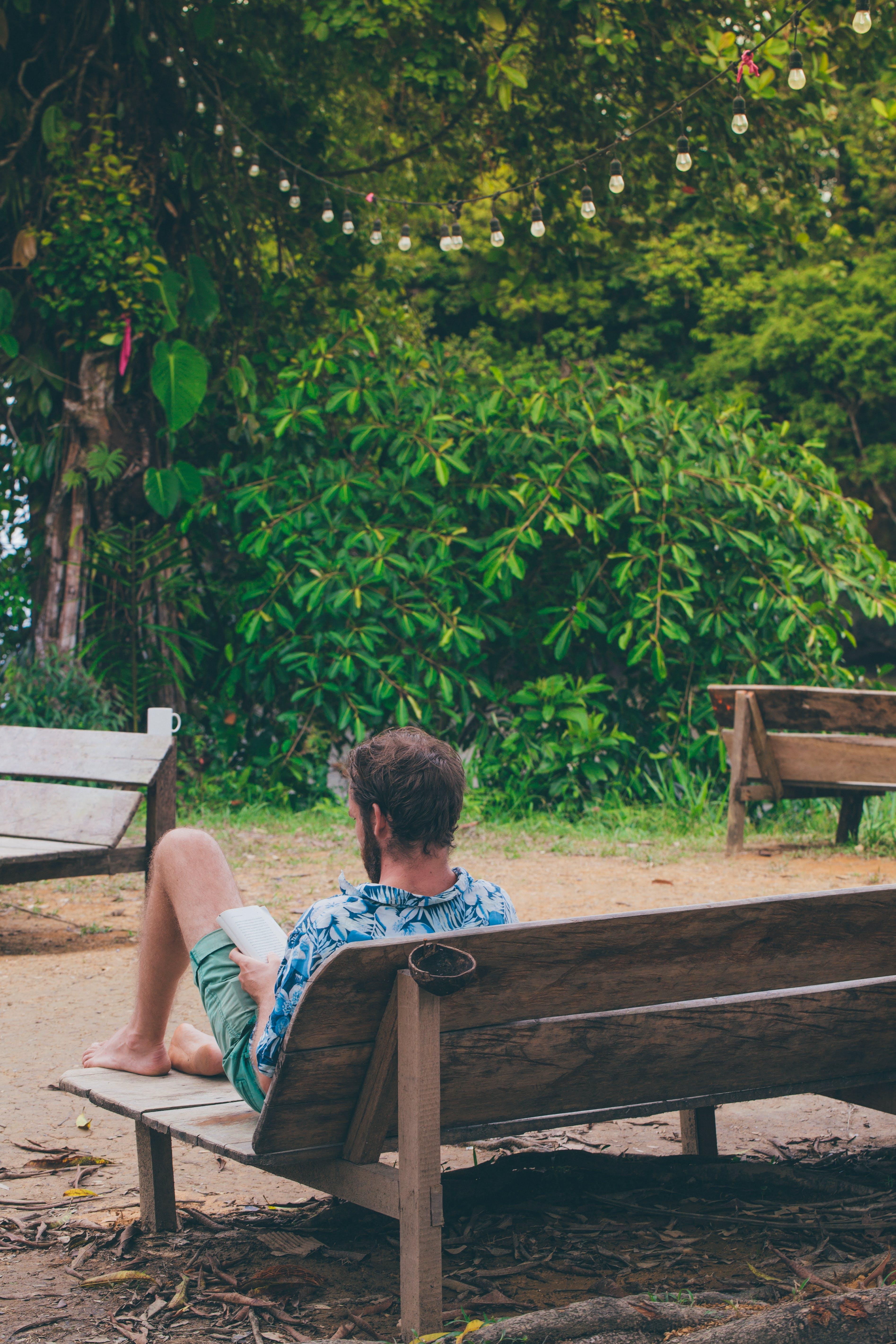 Man Reading Book Sitting on Bench Near Trees