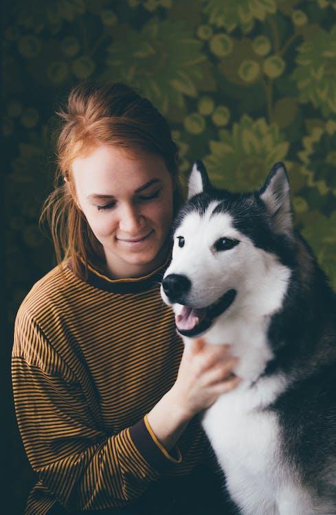 Woman Holding Adult Siberian Husky