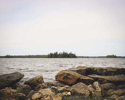 Foto d'estoc gratuïta de aigua, arbres, cel, llum del dia