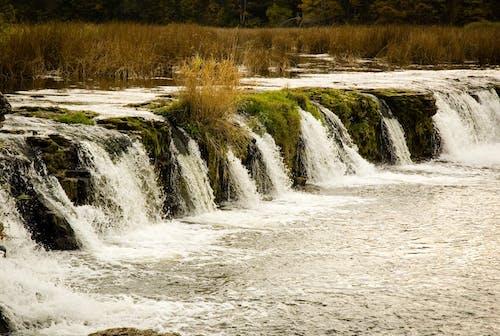 Δωρεάν στοκ φωτογραφιών με kuldyga, Καταρράκτης, λατβία, νερό