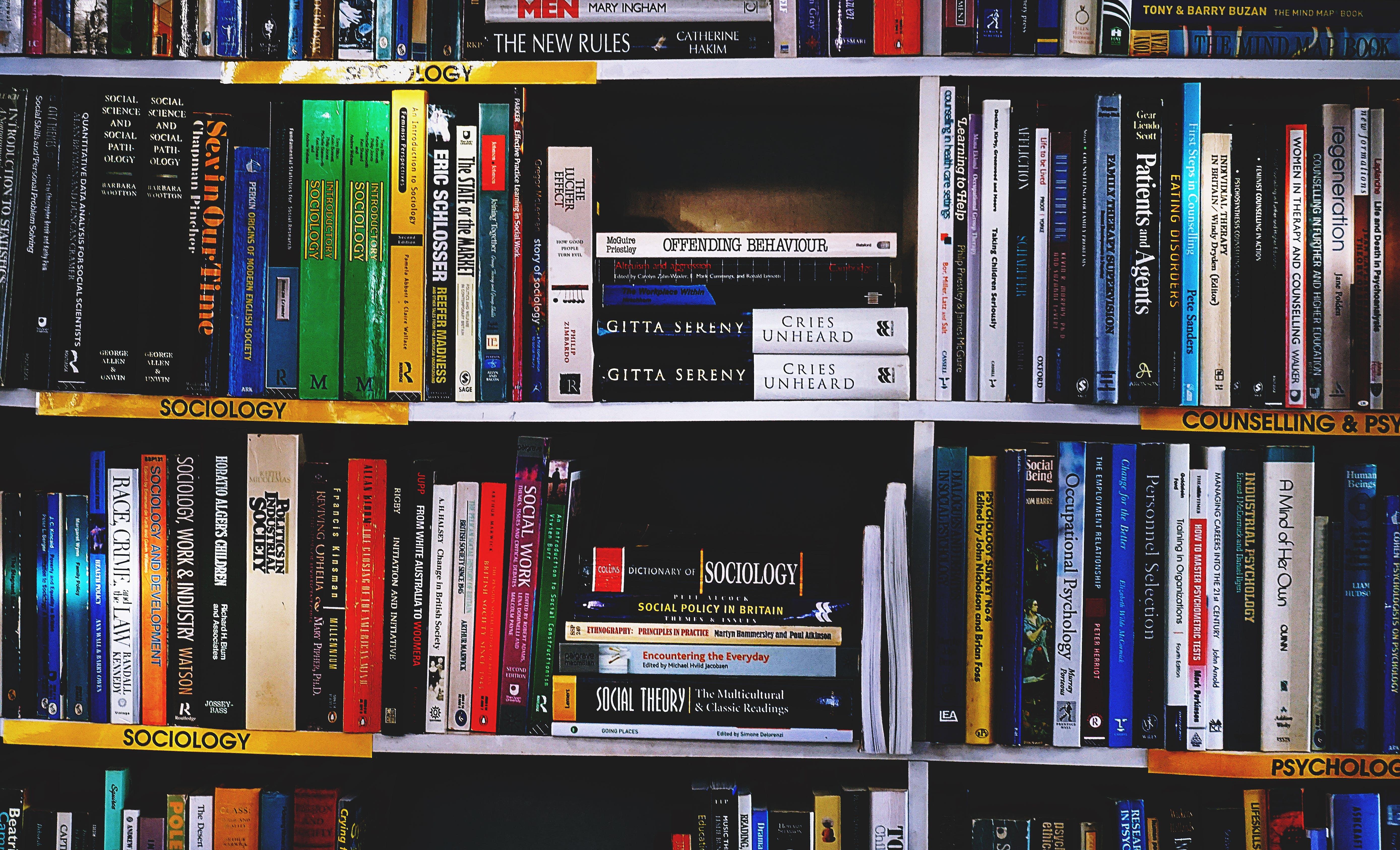 библиотека, знания, информация
