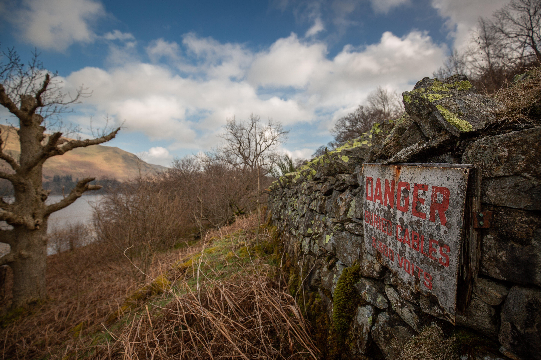 White Danger Signage Near Brown Leafless Tree