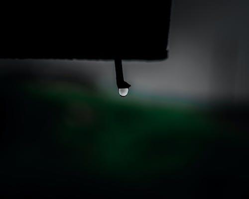 Ilmainen kuvapankkikuva tunnisteilla kastehelmi, pisara, pisara vettä, pisarat