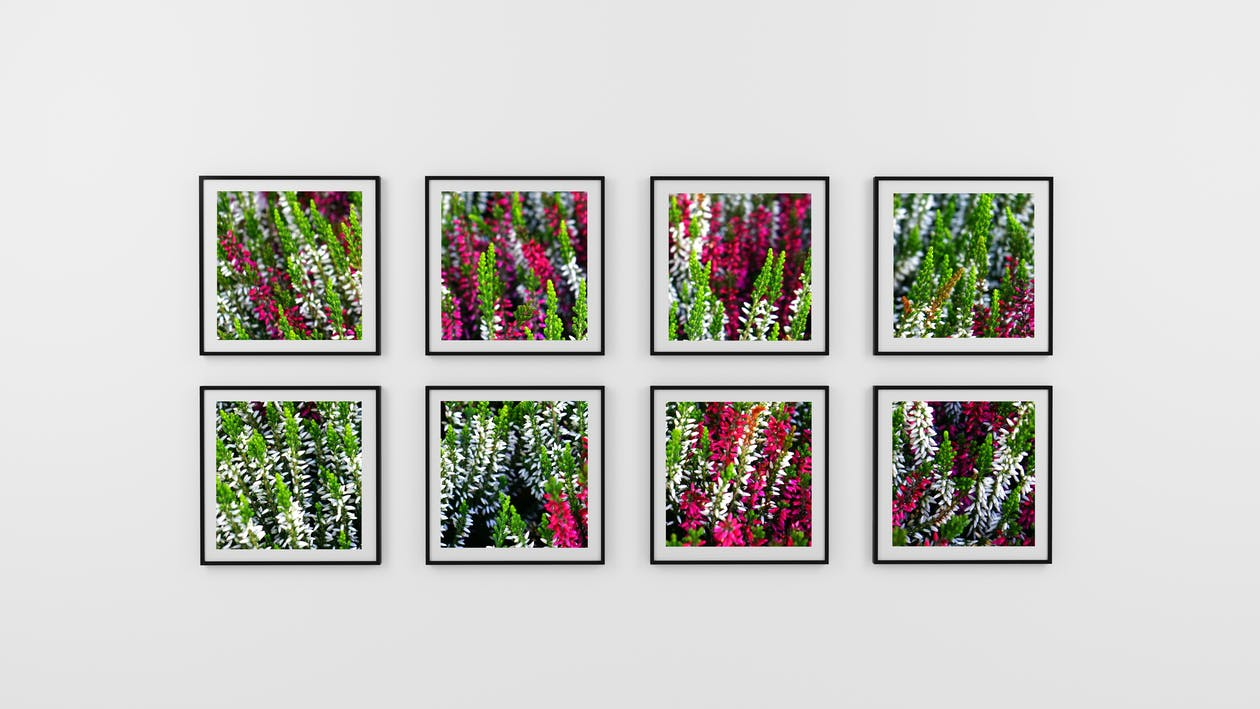 Eight Photo Frame of Flowers
