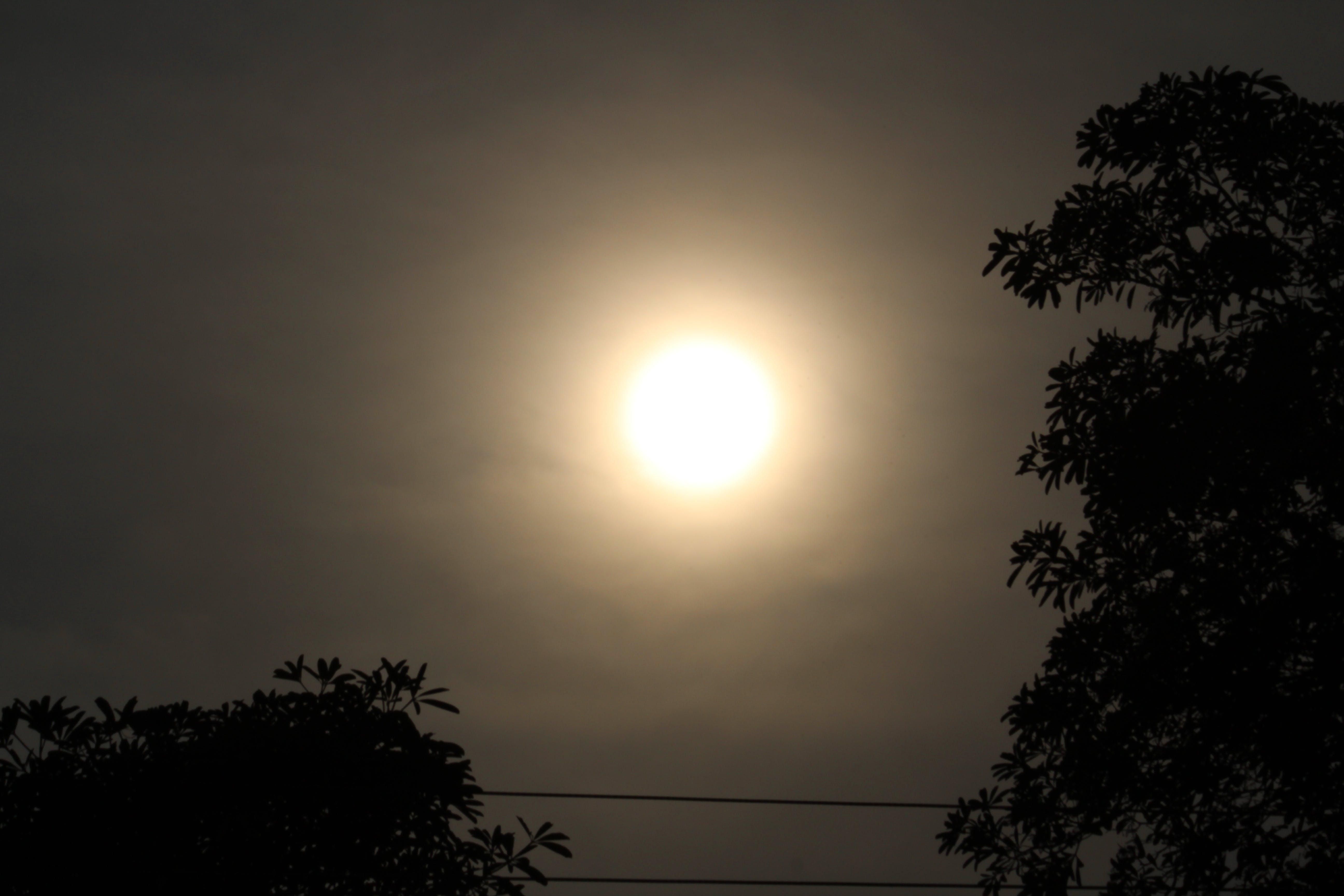 Free stock photo of hazy, hazy sun, sun