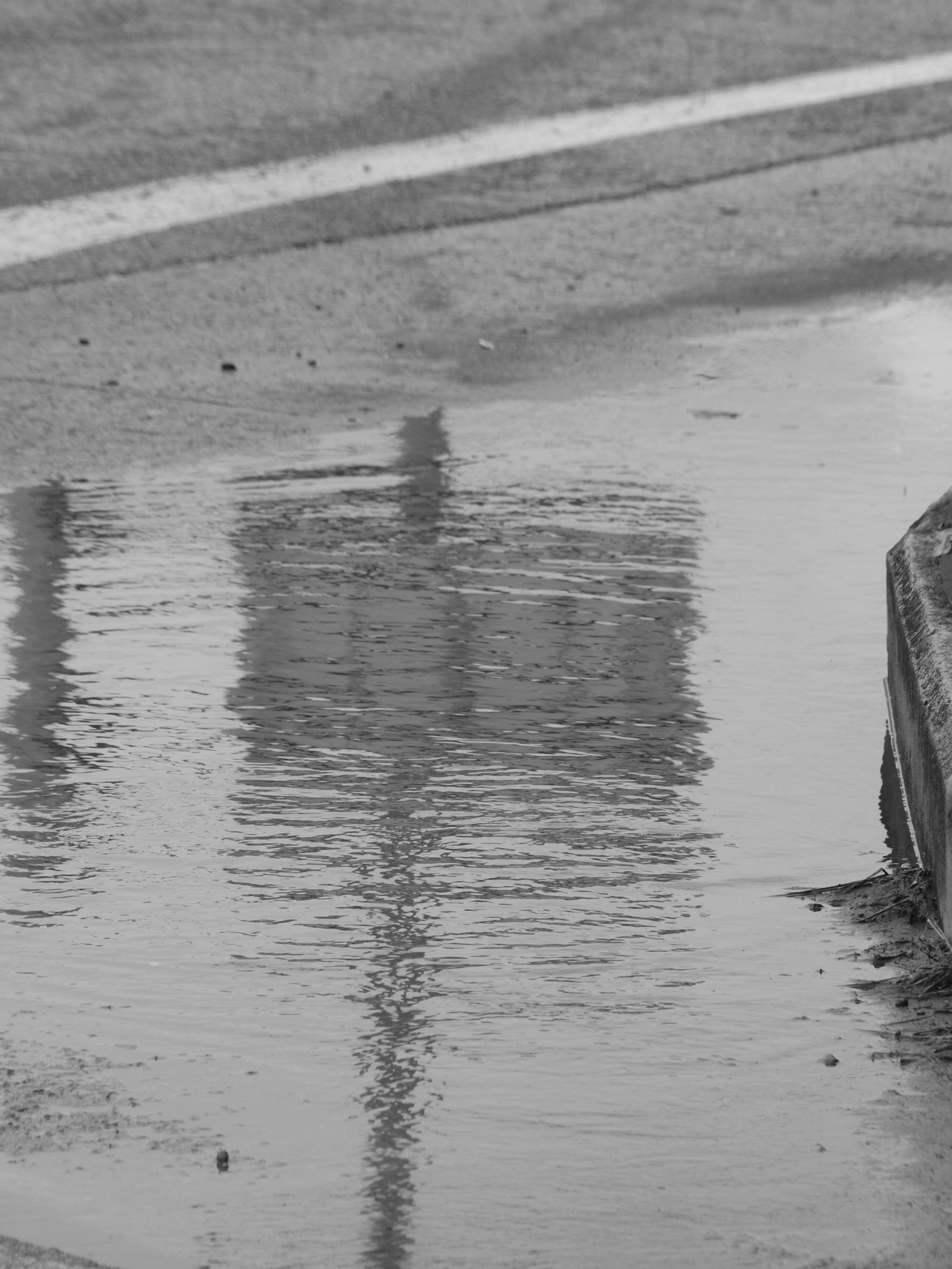 Gratis lagerfoto af regn, vand, vandskygge