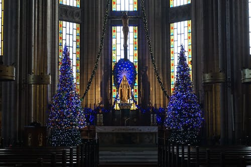 Interior of old catholic church with Christmas trees