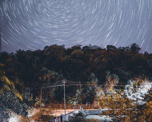 Δωρεάν στοκ φωτογραφιών με αστέρια, αστροφωτογραφία, αυγή, δάσος