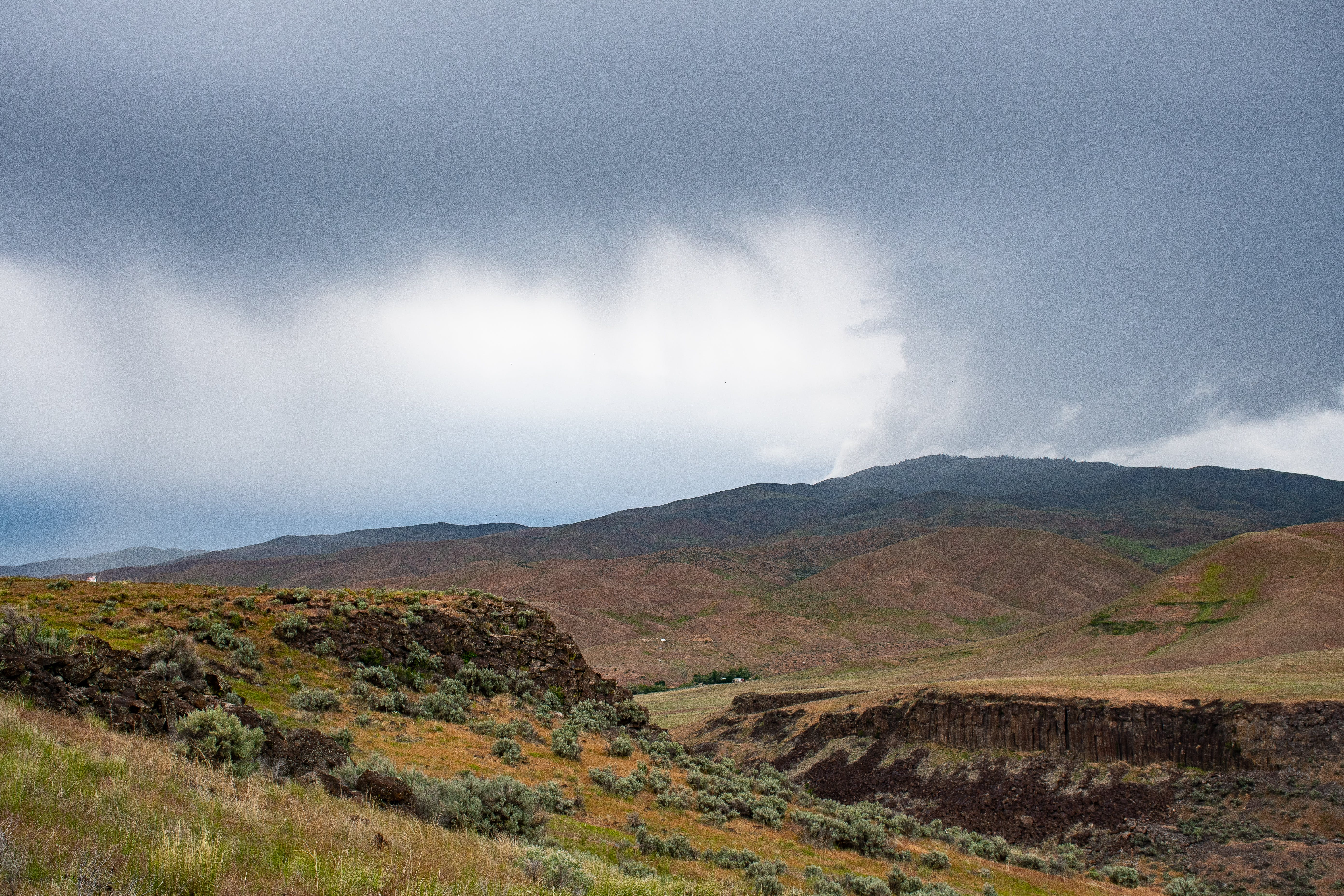 Foto profissional grátis de arbustos, área, cênico, céu