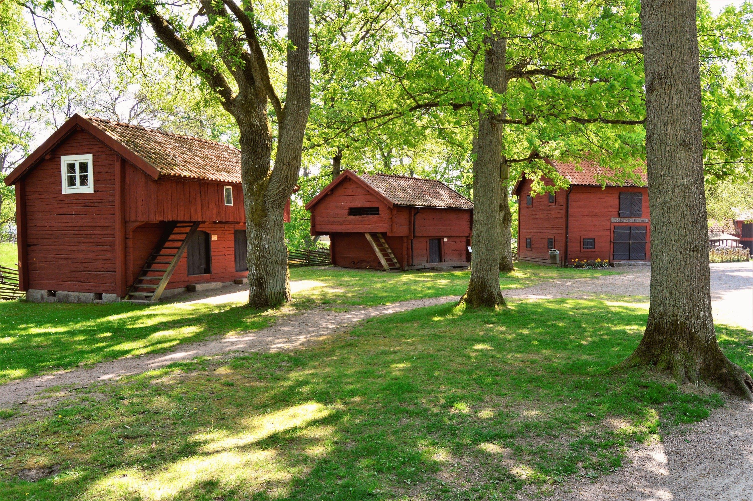 Three Brown Wooden Cabins