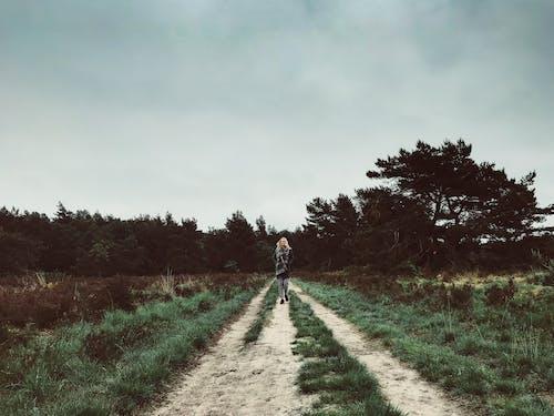 Foto d'estoc gratuïta de #woods, amants, art, bonic