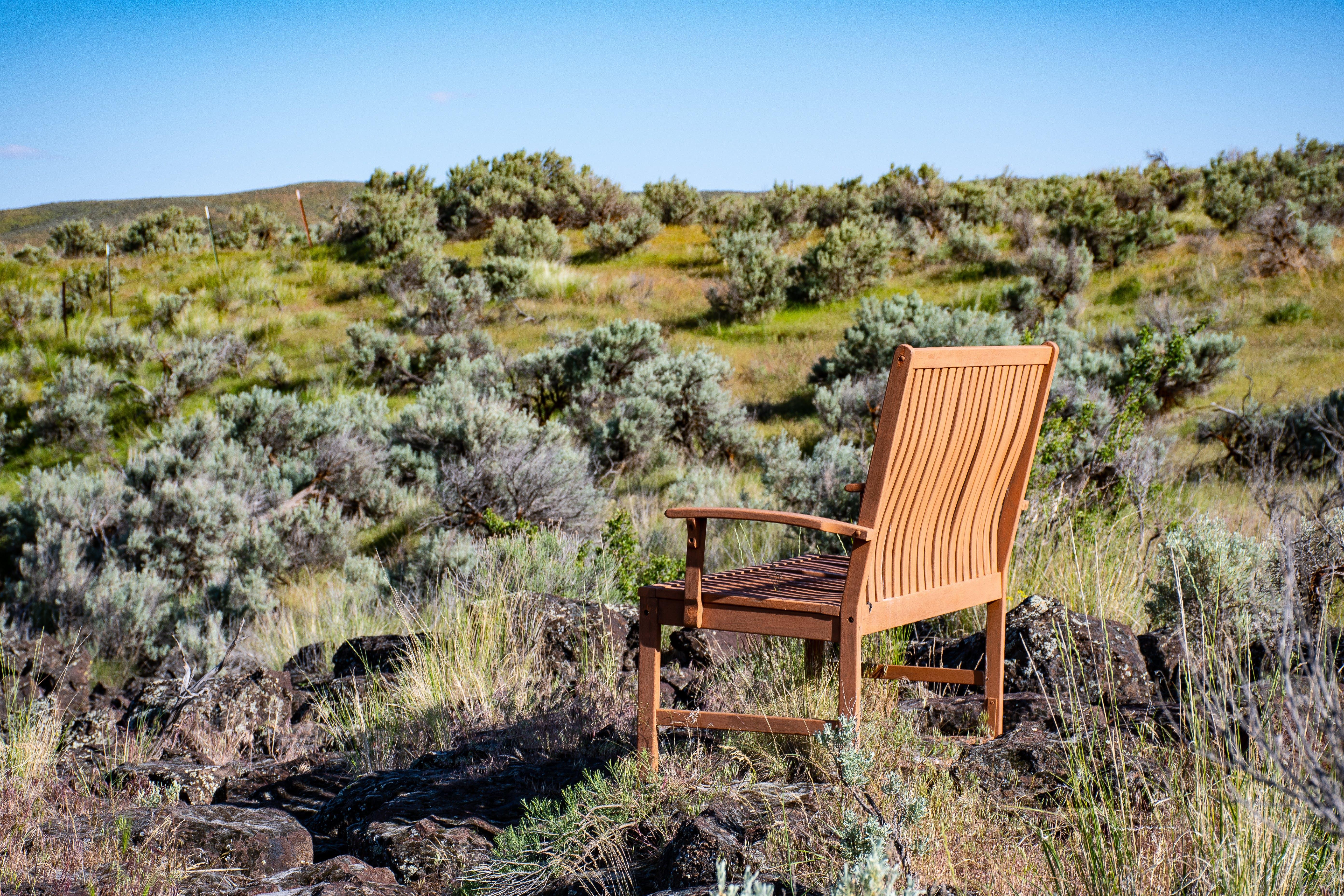 Brown Wooden Armchair on Green Grass