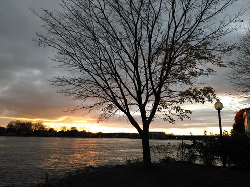Free stock photo of boardwalk, sunset