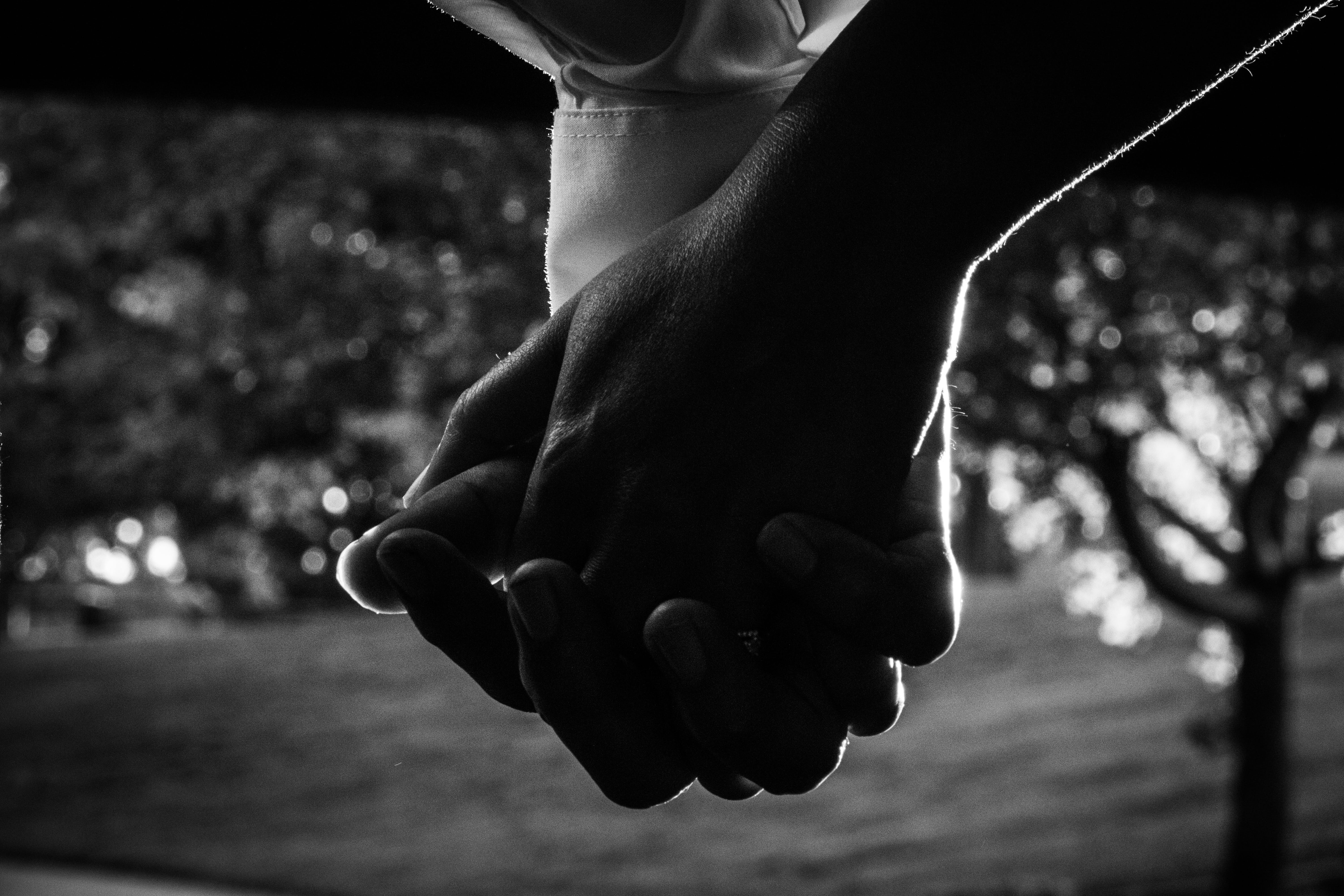 Free stock photo of holding hands, love, marriage